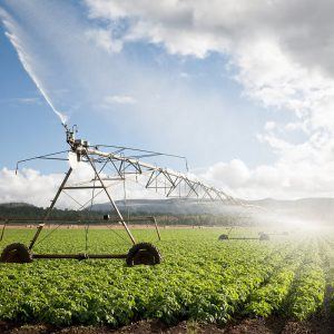 Irrigation Agricultural